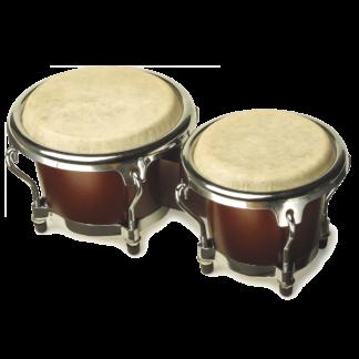 Lille bongo i babystørelse