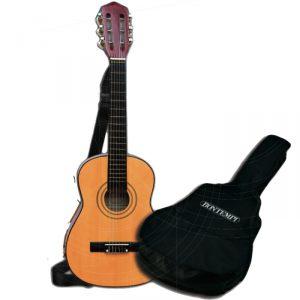 akustiskguitar og taske